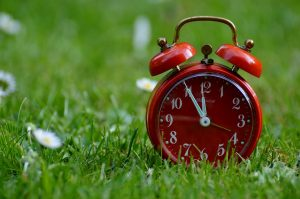 a red clock on a grass field