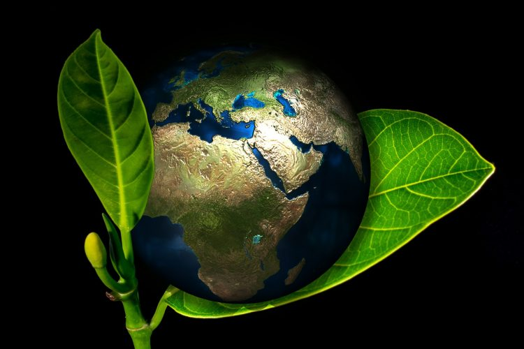 Our planet between two green leaves - save the environment and make a green move