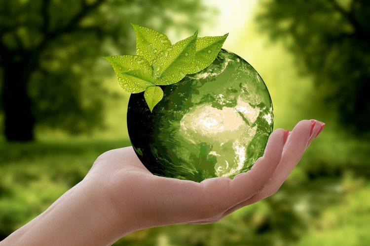 a symbol of ecology